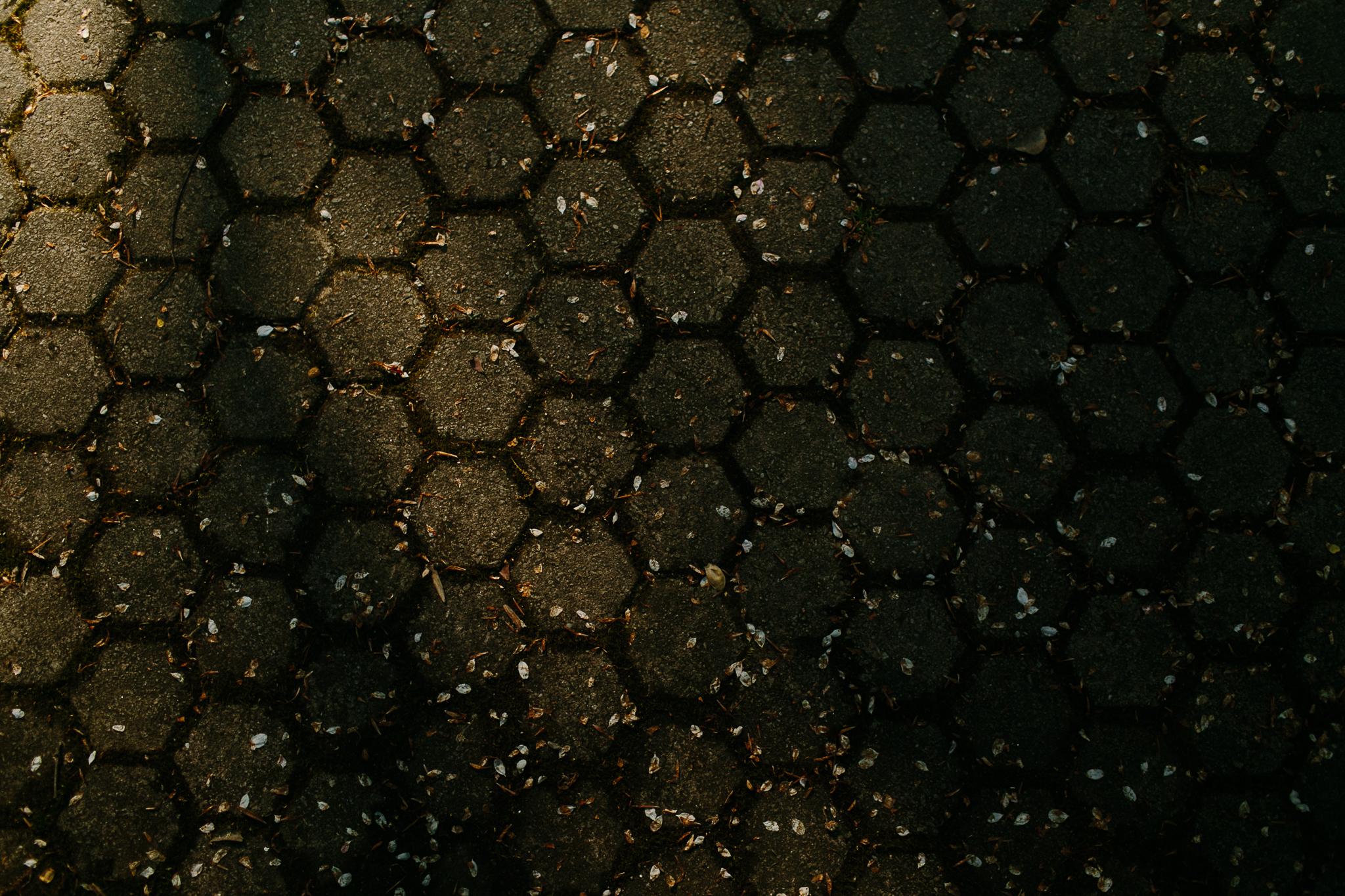 SLIDESHOW-217.jpg