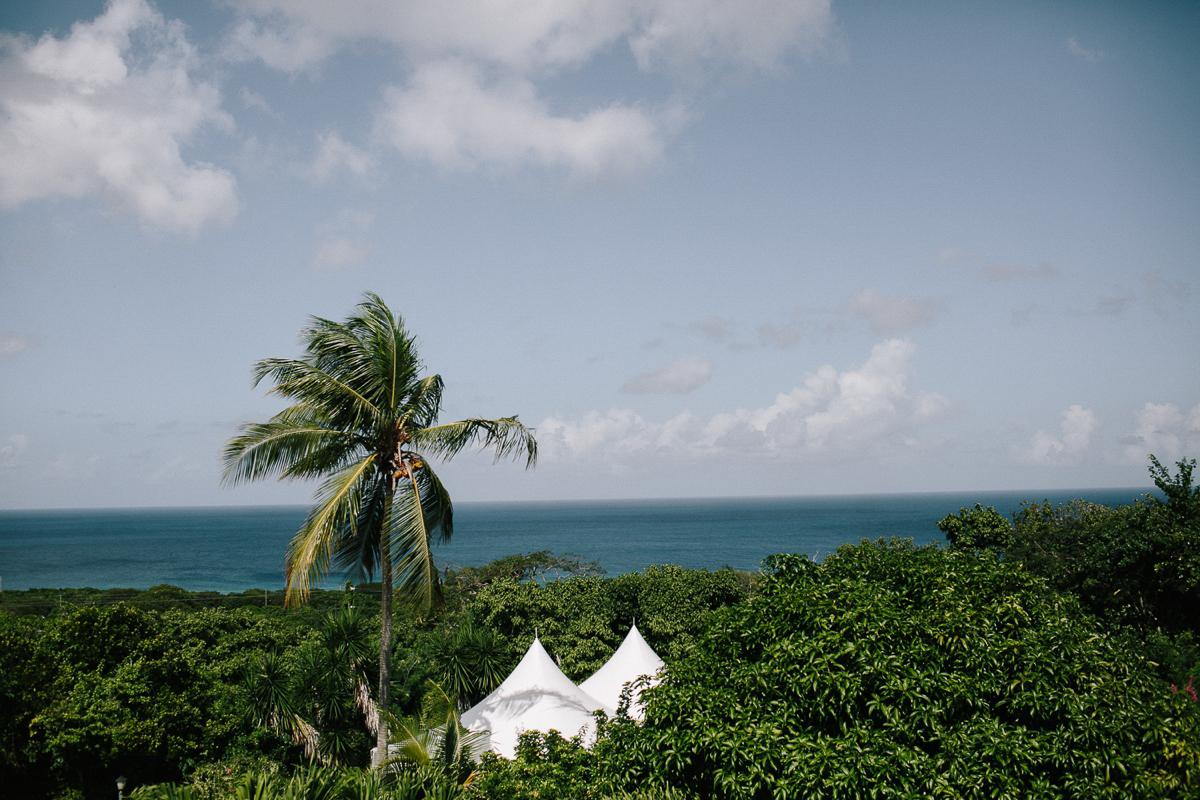 St_Croix_Wedding_Abi_Q_Photography_-103.jpg