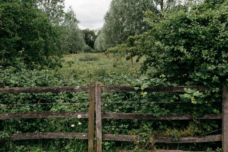 Notley-abbey-buckinghamshire-england-wedding-abi-q-photography--101.jpg