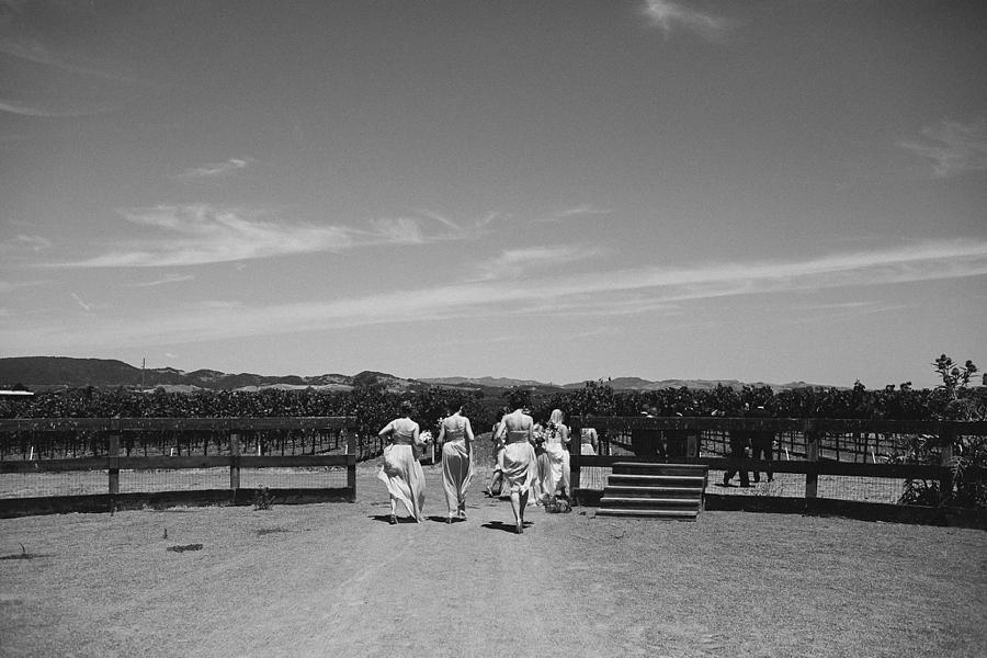 Sonoma-garden-pavilion-wedding-abi-q-photography-sanoma-california_0115.jpg