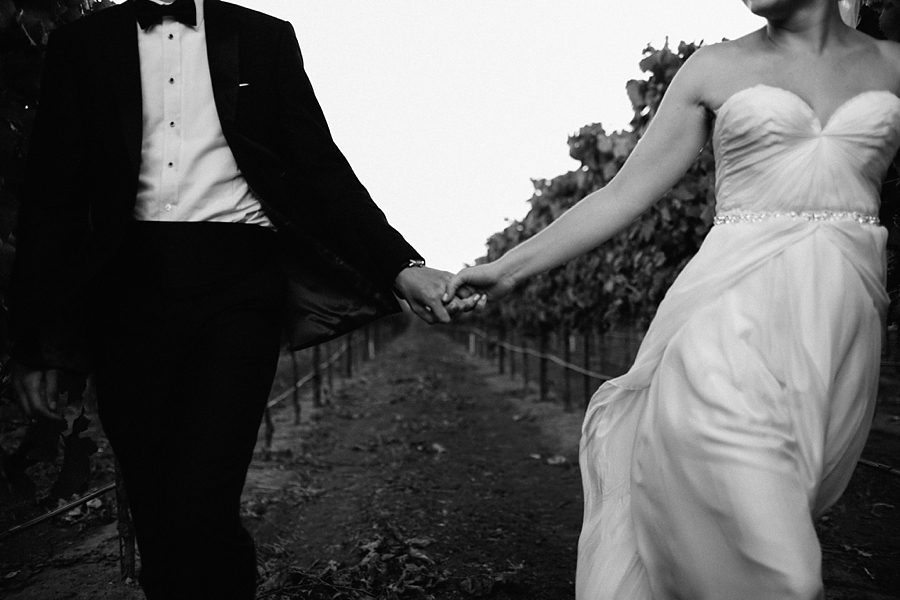Sonoma-garden-pavilion-wedding-abi-q-photography-sanoma-california_0175.jpg