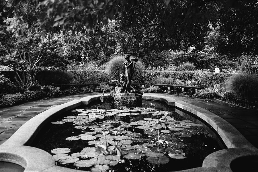 Central-park-wedding-elopement-new-york-city-abi-q-photography--113.jpg