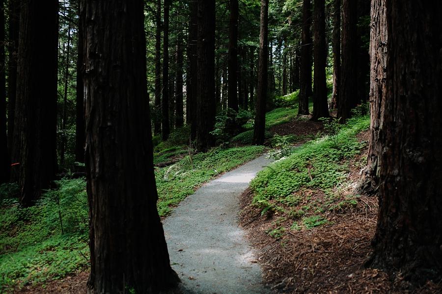 Berkeley-botanical-garden-wedding-Abi-Q-photography-_0123.jpg