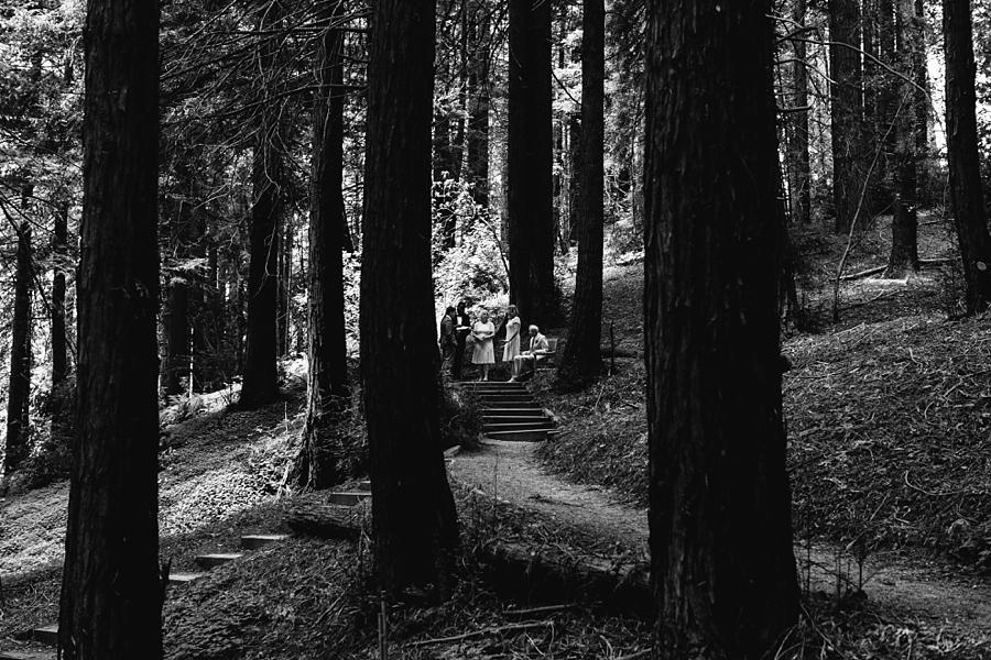 Berkeley-botanical-garden-wedding-Abi-Q-photography-_0152.jpg
