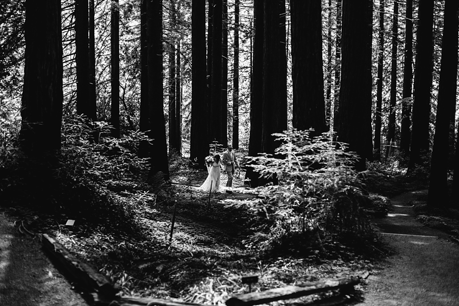 Berkeley-botanical-garden-wedding-Abi-Q-photography-_0153.jpg