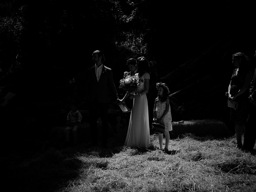 -sabor-mexicano-farm-wedding-guerneville-Abi-Q-photography-_0126.jpg