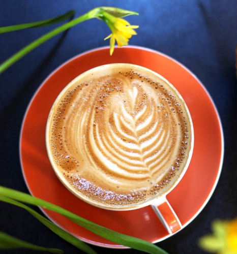 bean-cycle-latte-art