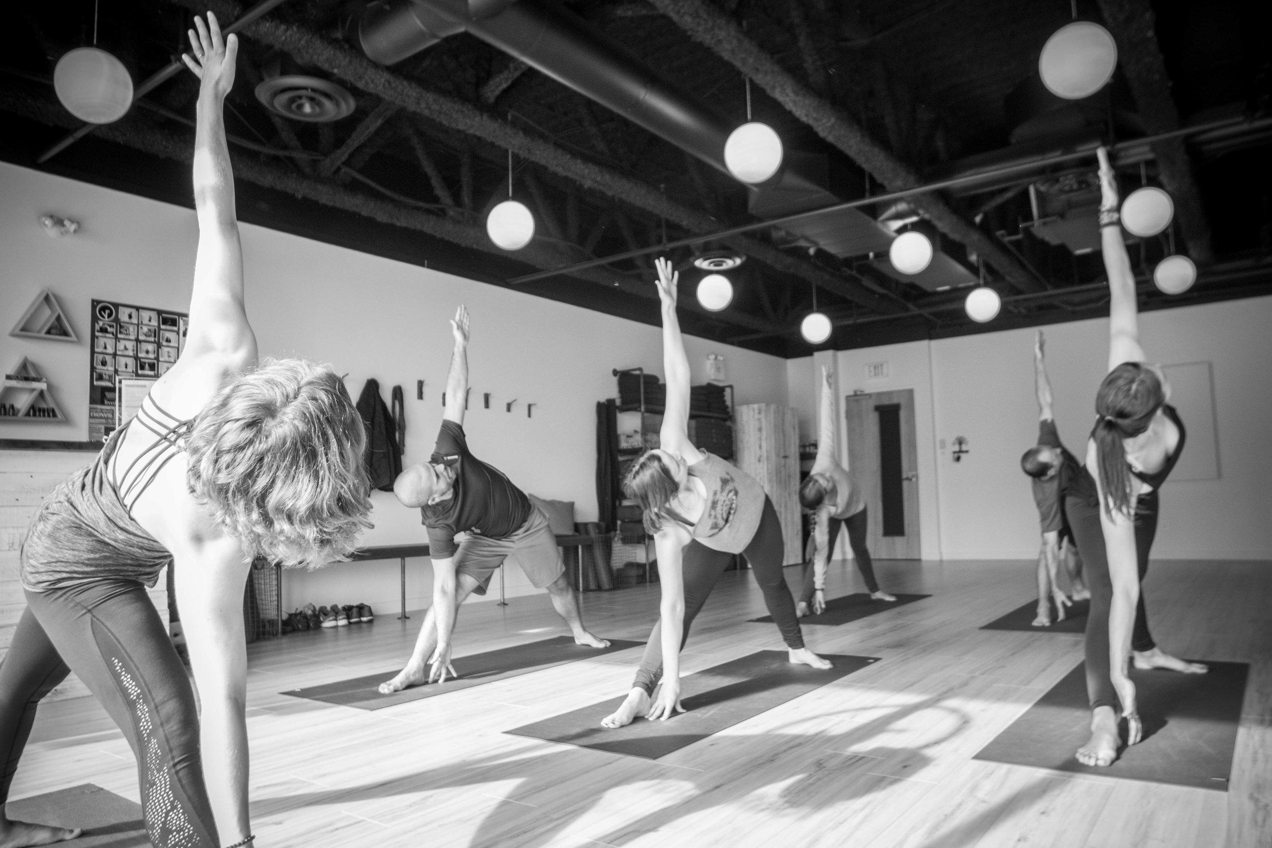 The Yoga Root-Parham Pashaei-2016-10-C-2.JPG