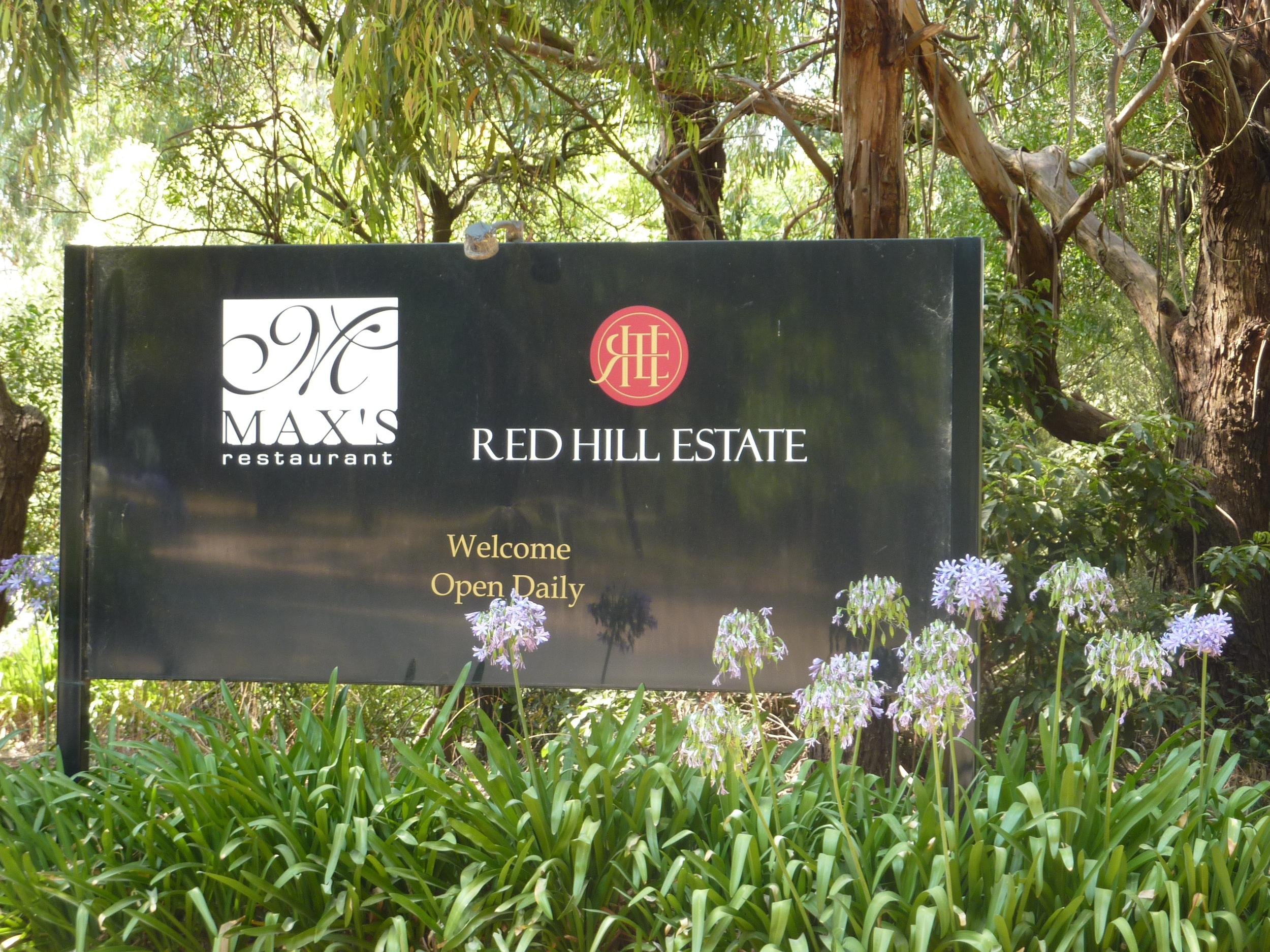 Red Hill Estate Vineyard