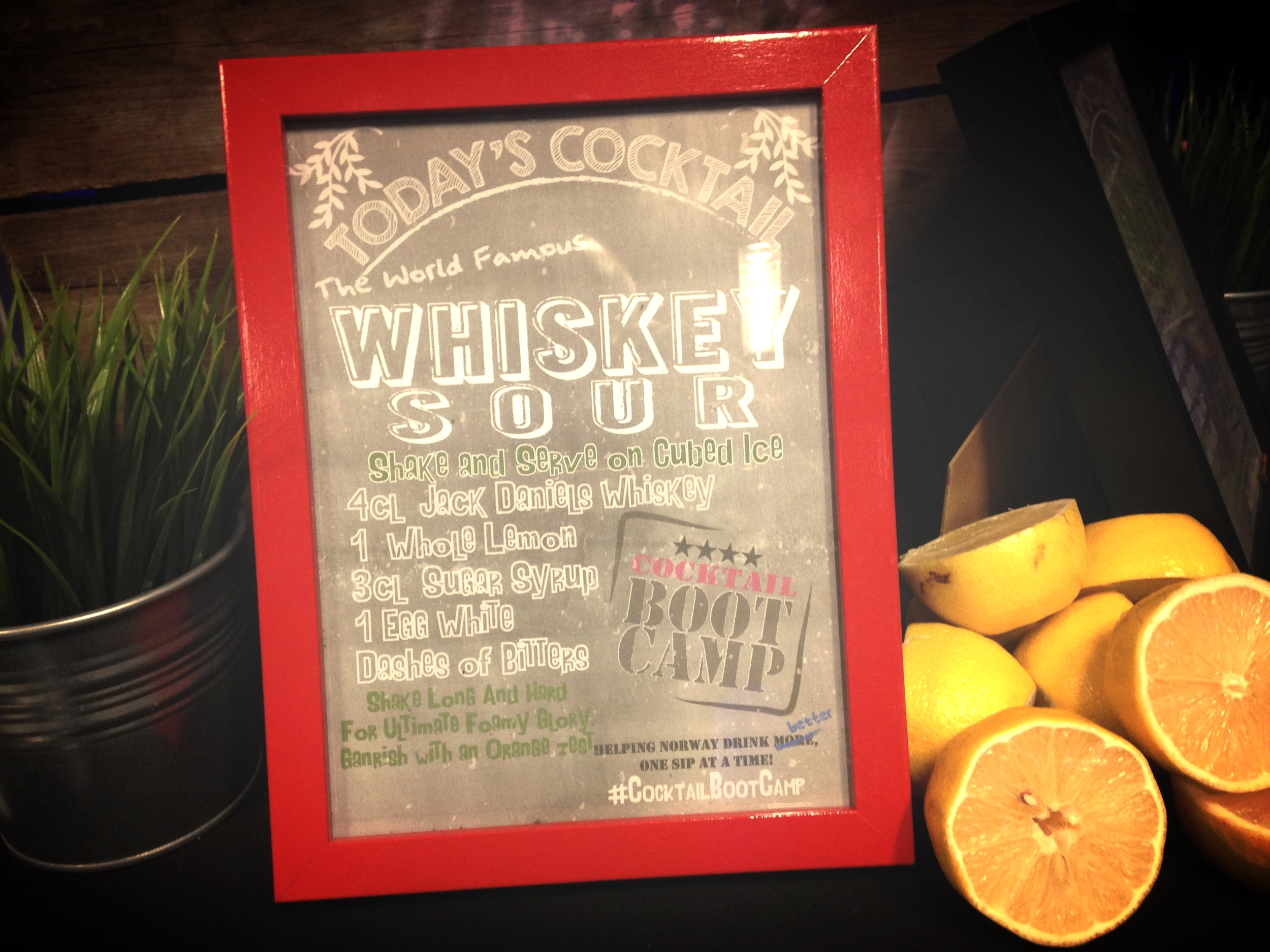 Cocktail BootCamp Whiskey Sour Frame
