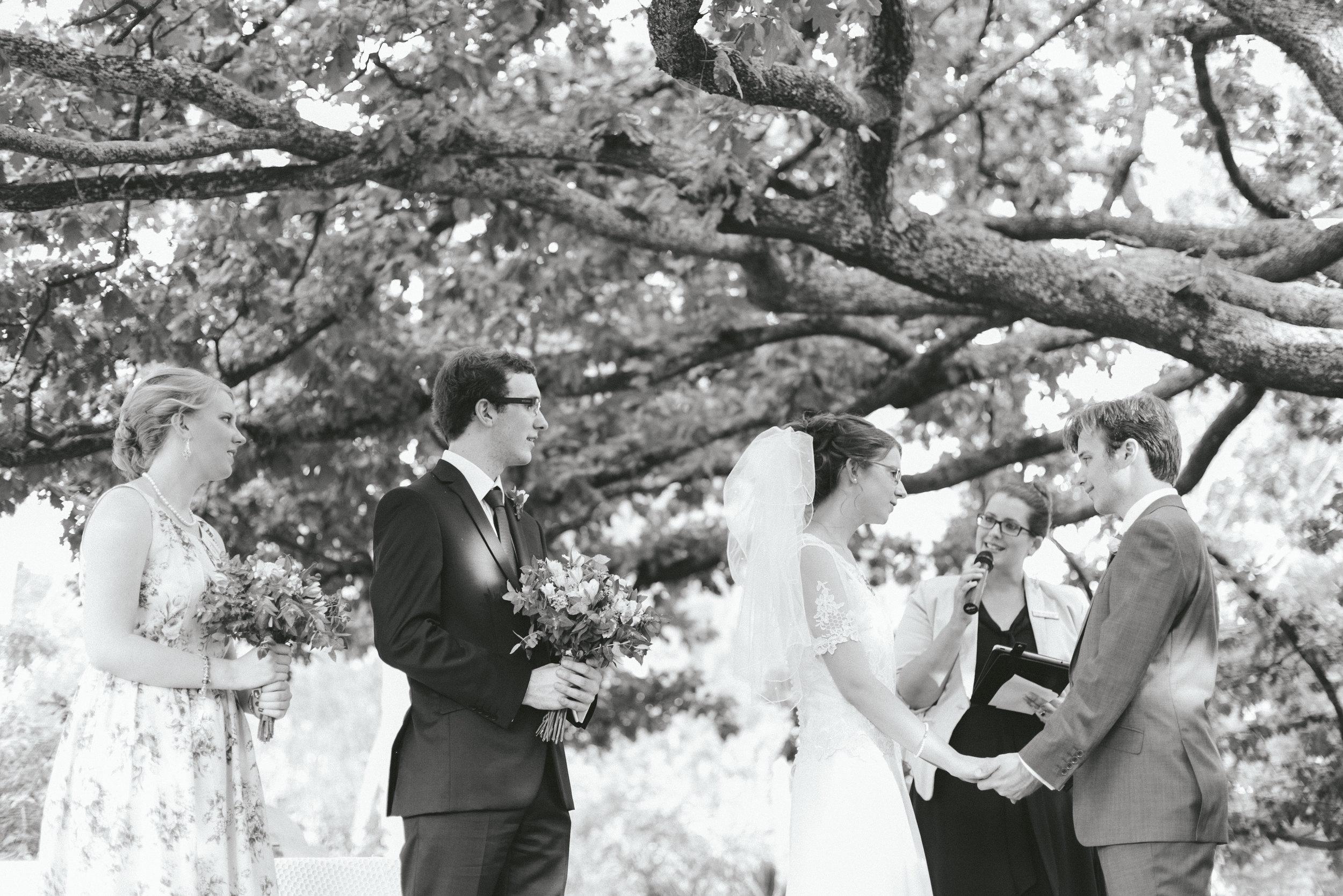 Melbourne Marriage Celebrant Dandenong Ranges