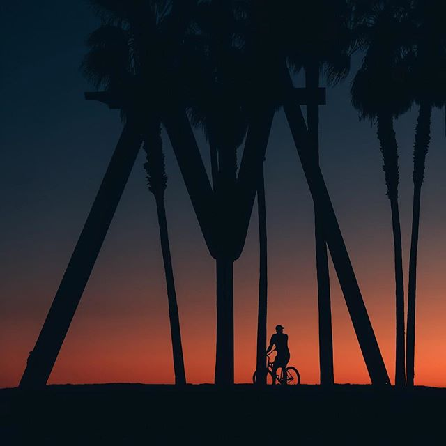 Went out for a little bike ride. But I'm back now.  I dropped my phone in the sand. I peddled as fast as I could, I felt the wind in my hair. I stopped to feel the sun on my face. I forgot about time.  But I'm back now. #silhouettesarethenewblack #therealhouseplantsoflosangeles -