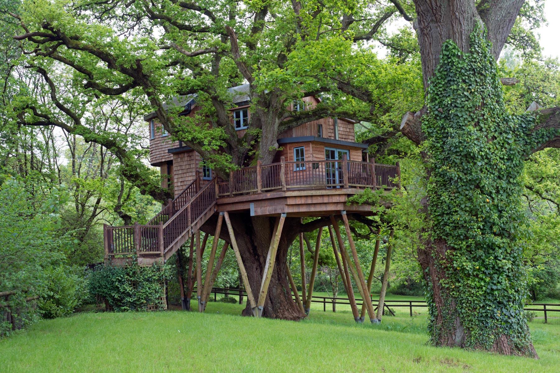 Treetops Treehouse 2.JPG