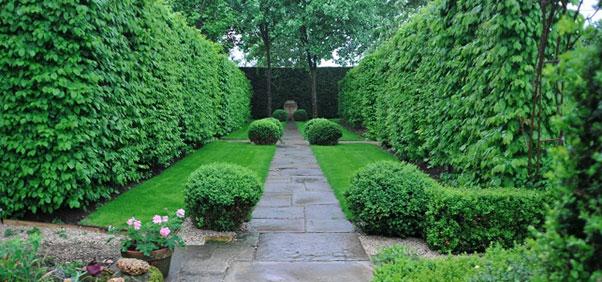 gardenMain.jpg