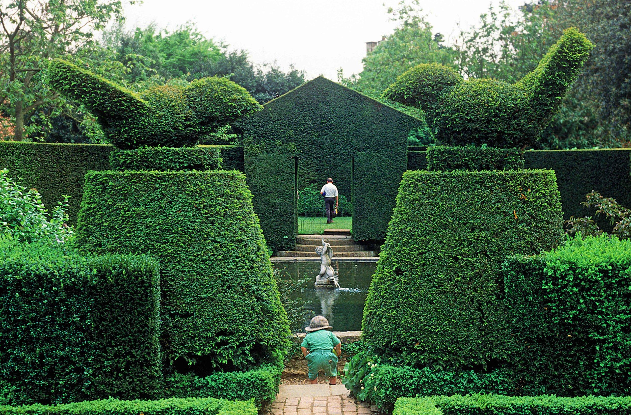Topiary, Hidcote Manor Garden, Chipping Campden, Gloucs., England.jpg