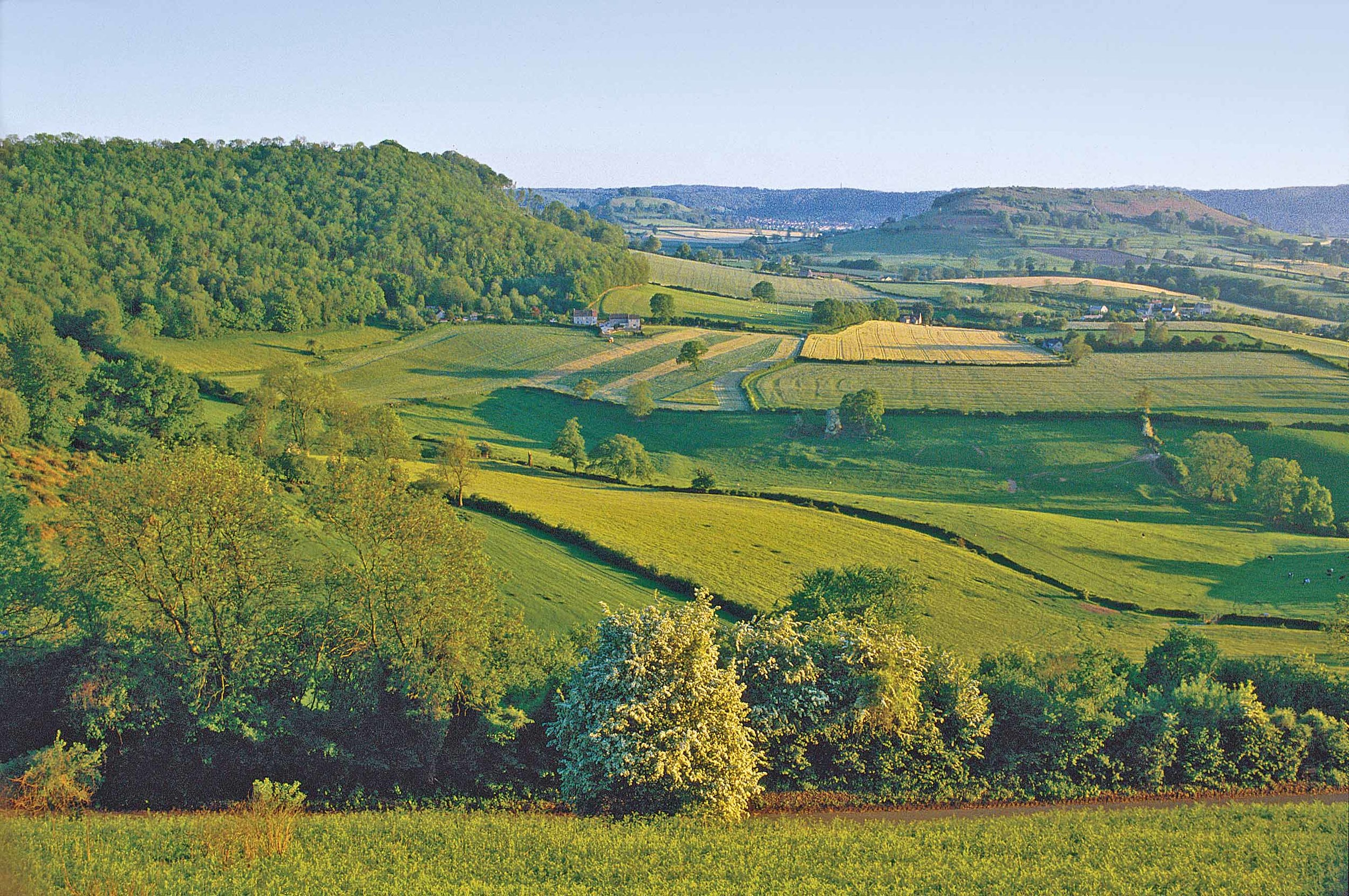 Cam Long Down from Coaley Peak, Glos, England.jpg