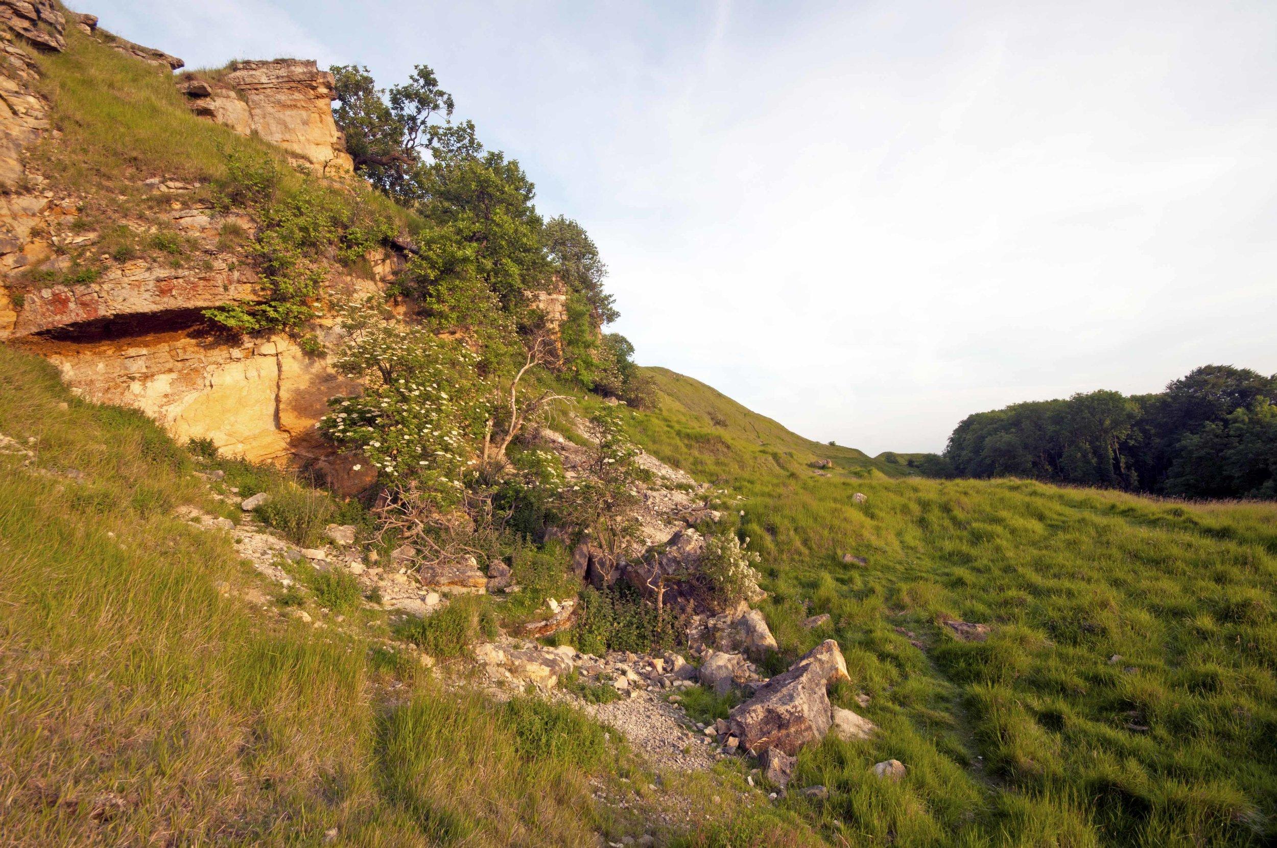 Rock Fall, Cleeve Hill.jpg