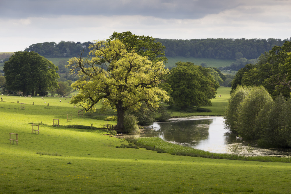 National Trust Images:Chris Lacey copy.jpg