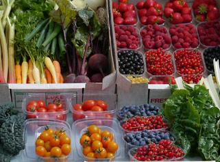 fruit1.jpg