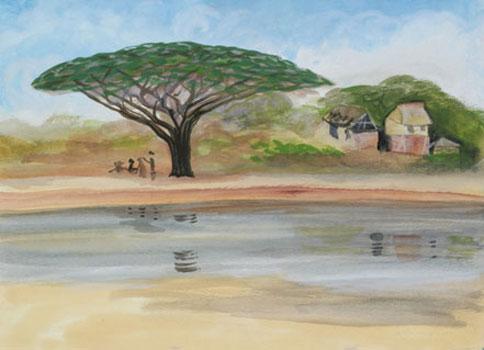 acacia-tree-reflected.jpg