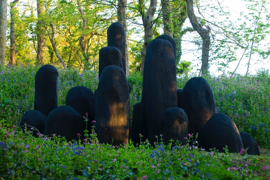 David Nash - Black Mound (photo by Clive Nichols).jpeg