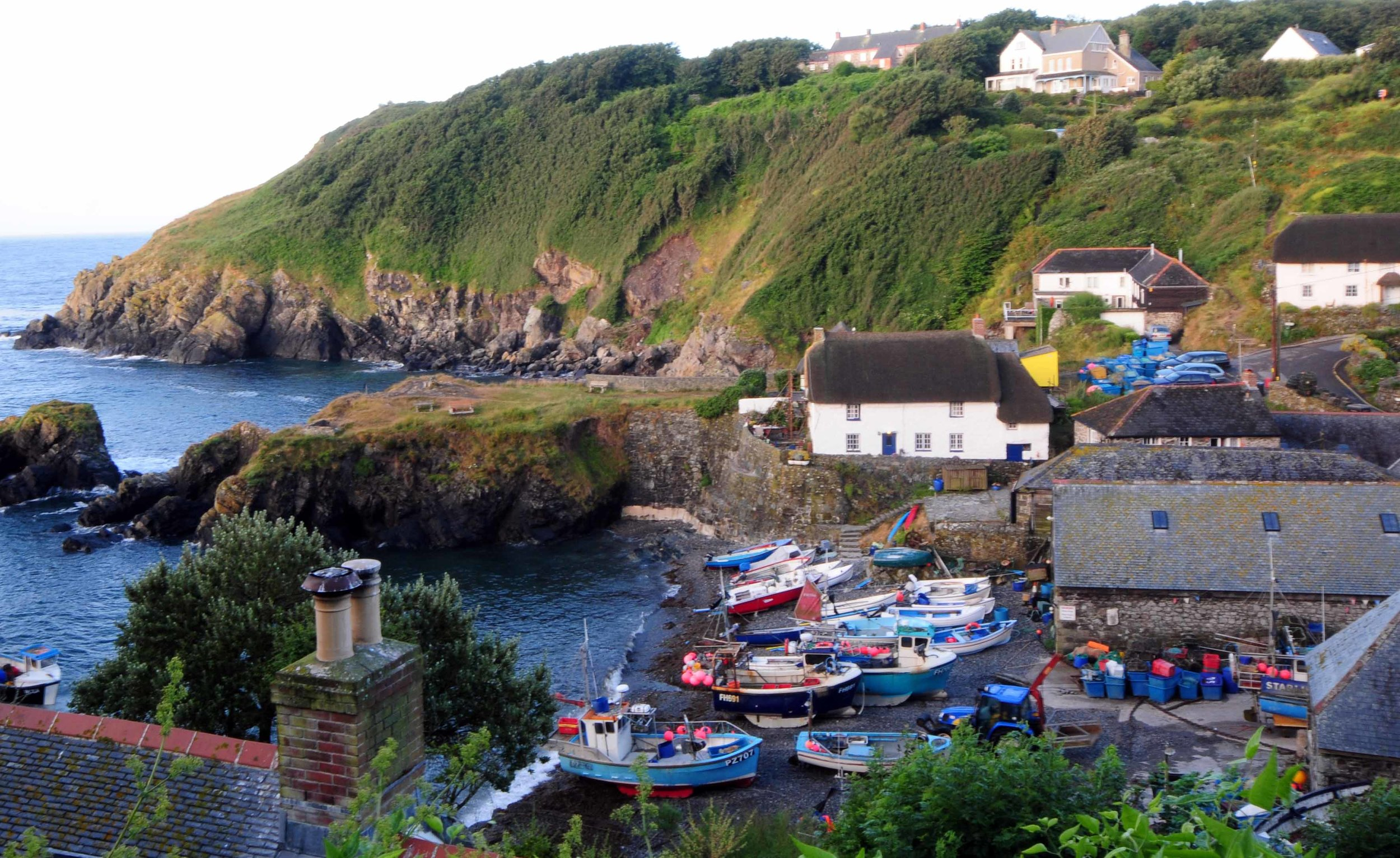 Overlooking Cadgwith.jpg