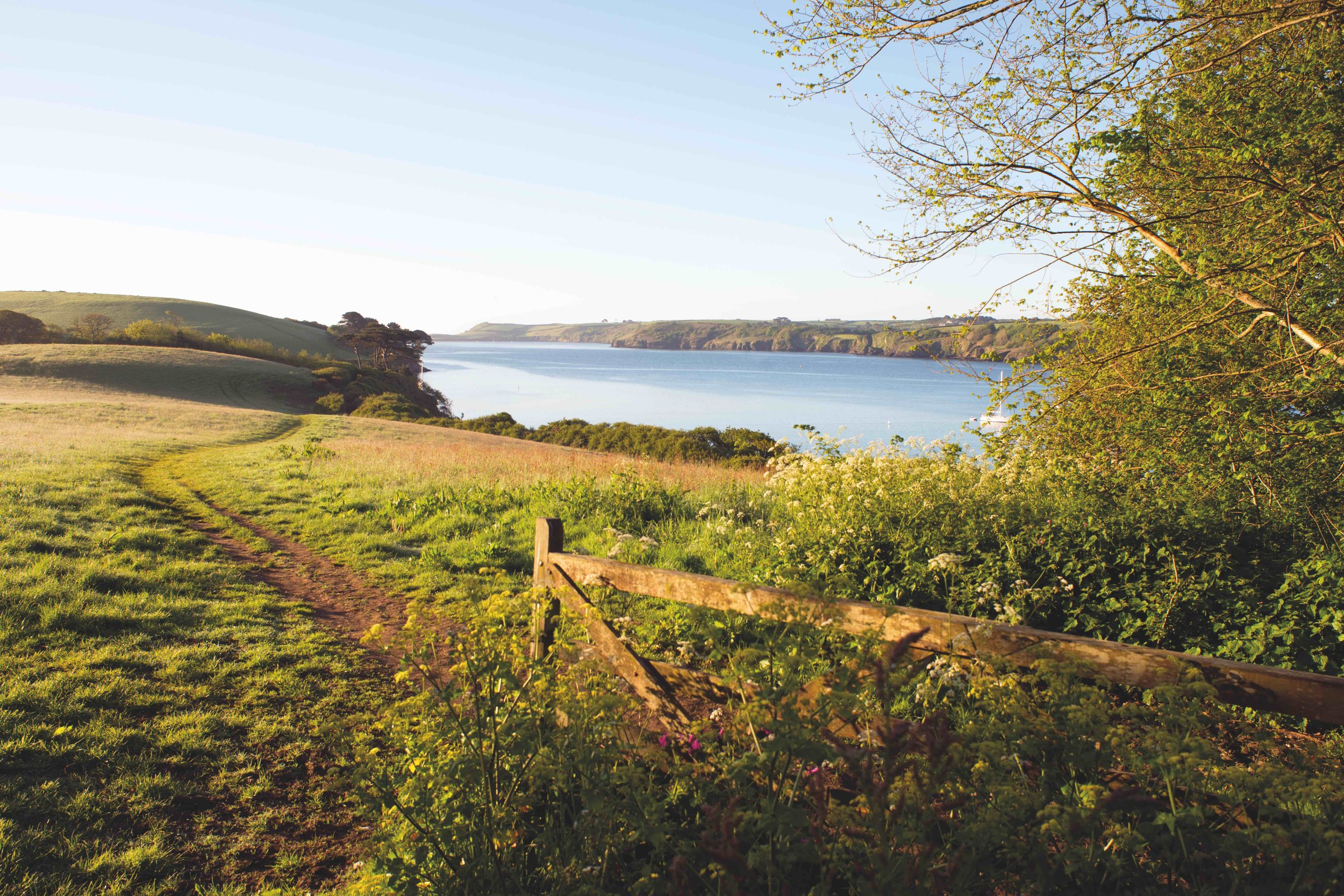 Gateway to Helford View copy.jpg