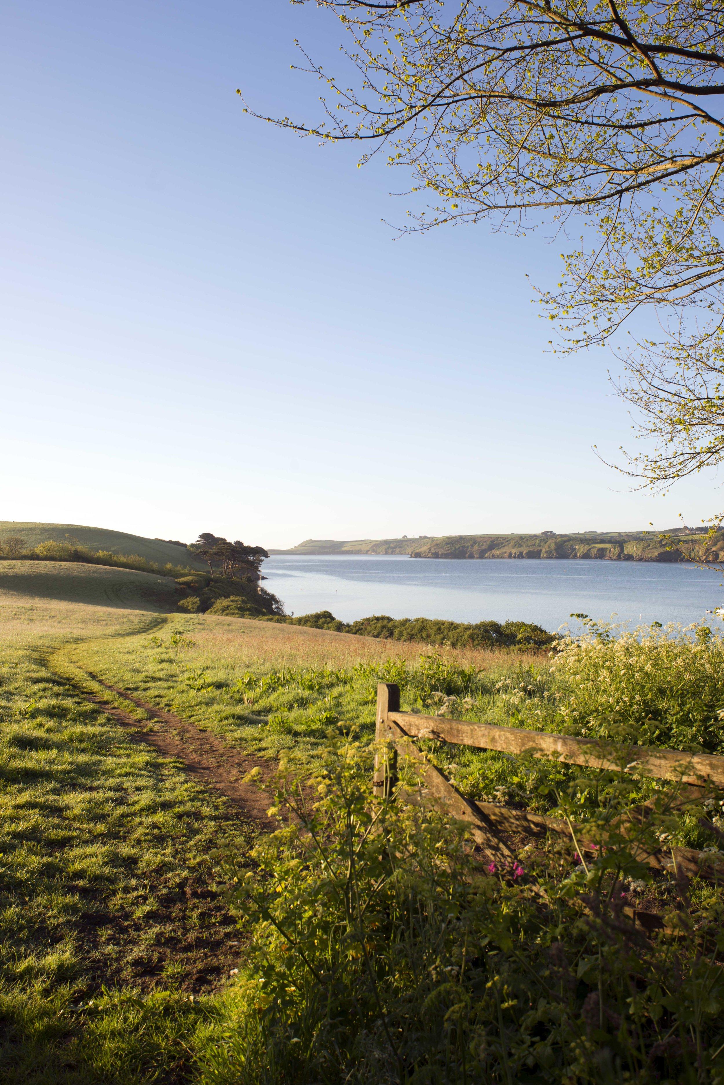 Helford Estuary -