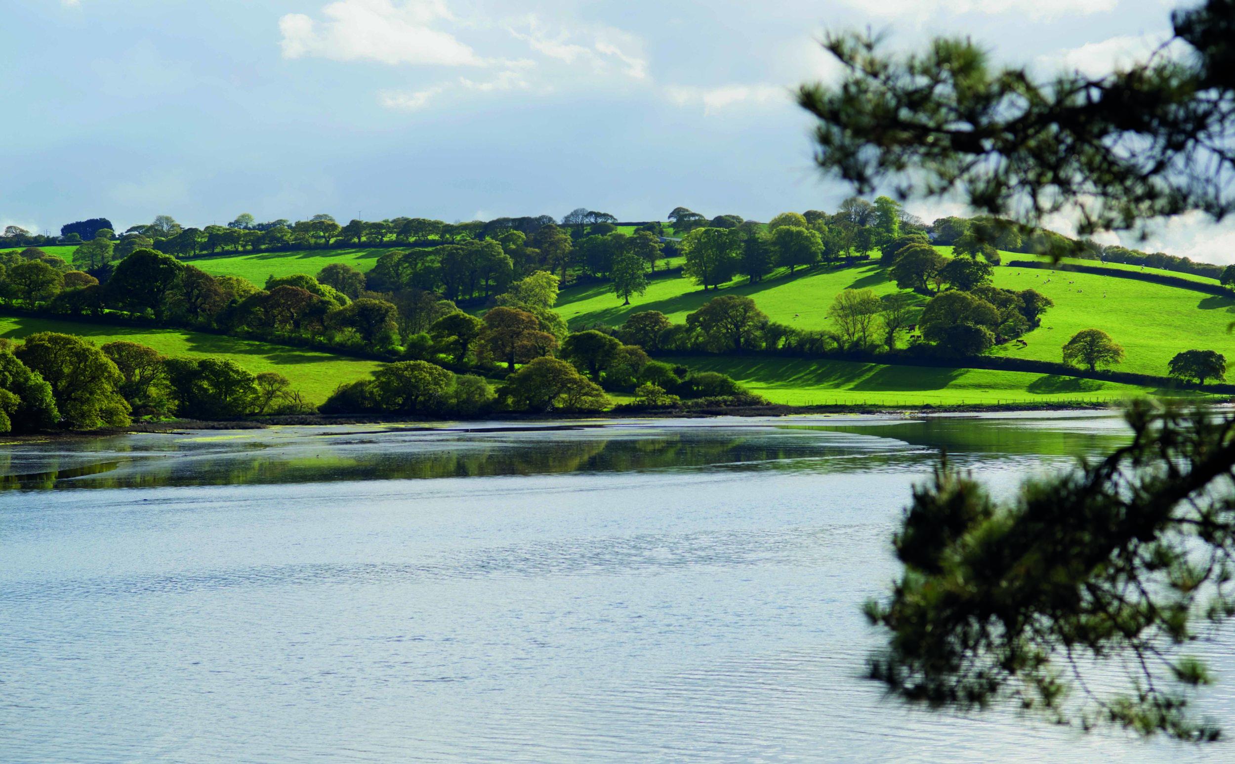 17. Pastoral Landscape, Truro River.jpg