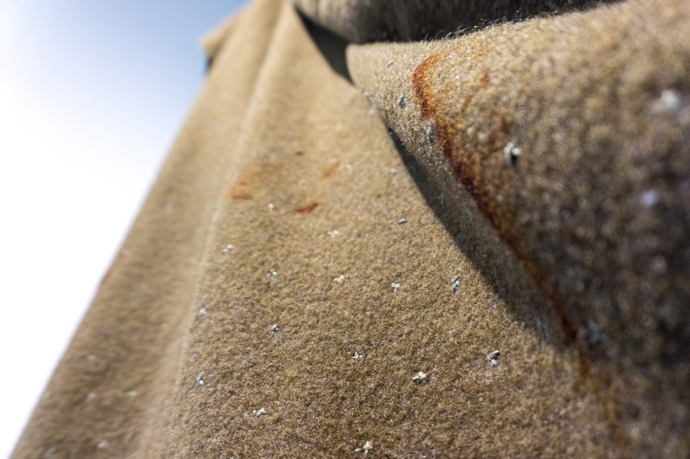 Star Blanket Close Up #5.jpg