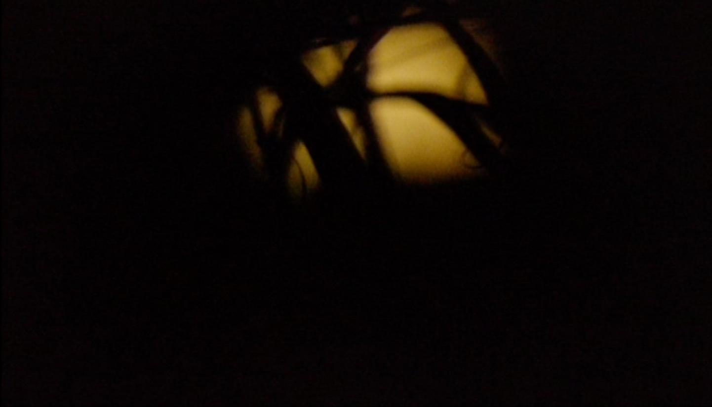 stills+kaya+#2+cropped+jpeg.jpg