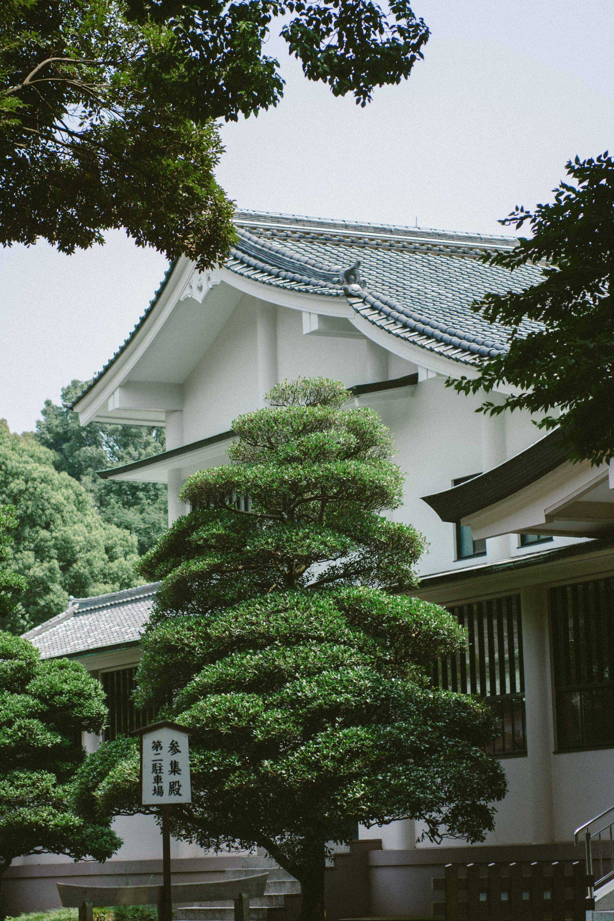 TOKYO VIA TOLILA