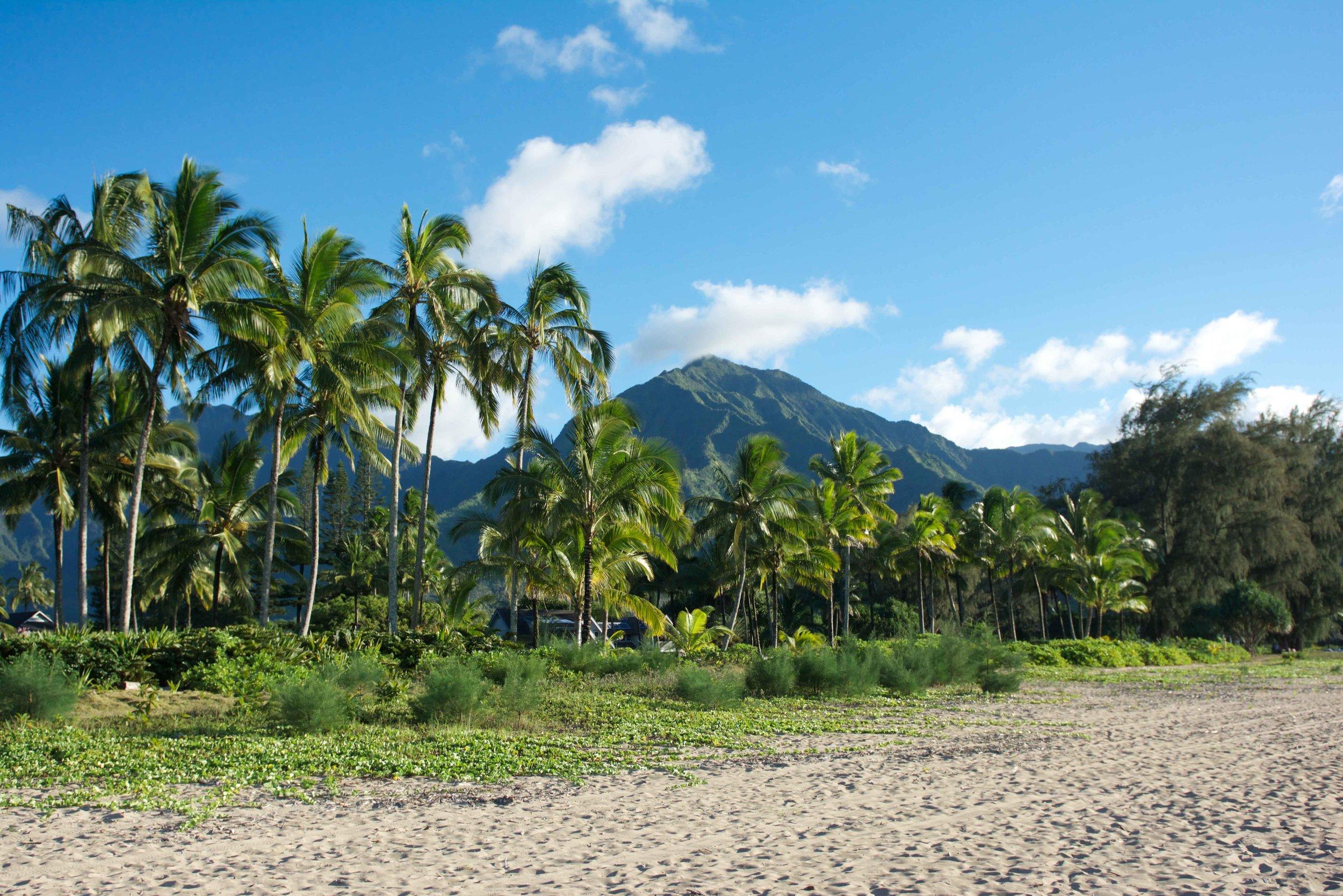 HAWAII VIA TOLILA
