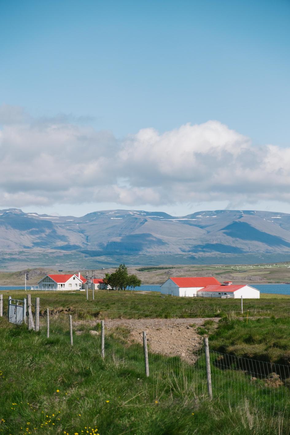 ICELAND - VIA TOLILA