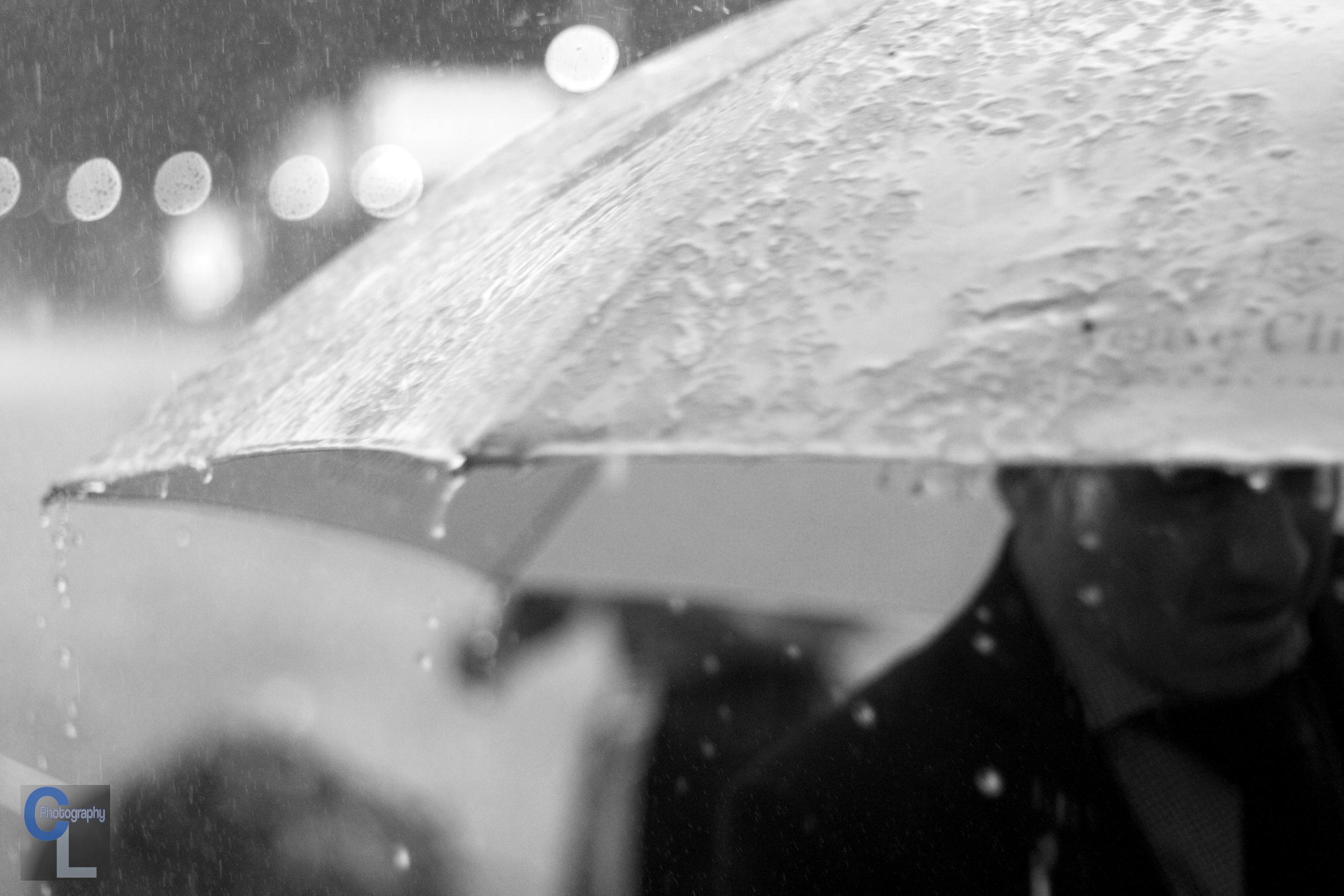 IMG_1484 rainy days bw clp.JPG