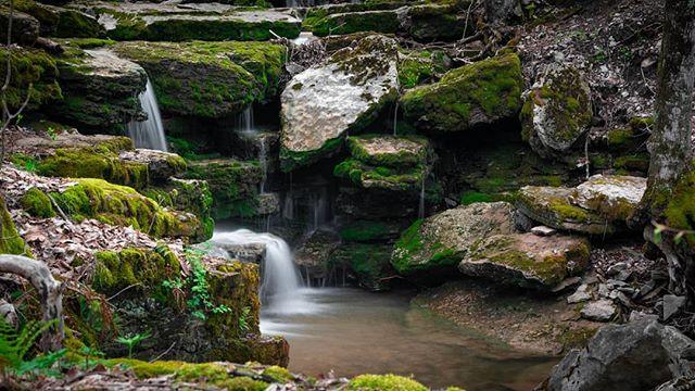 A quick trip to Chittenango Falls #photography #landscape #nikond850 #creek #stream #nature