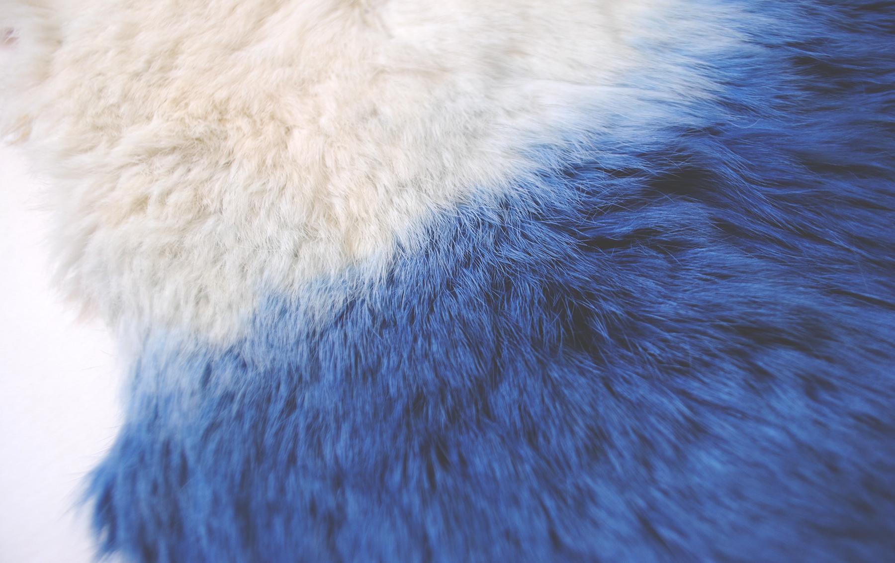 Hide Detail.jpg