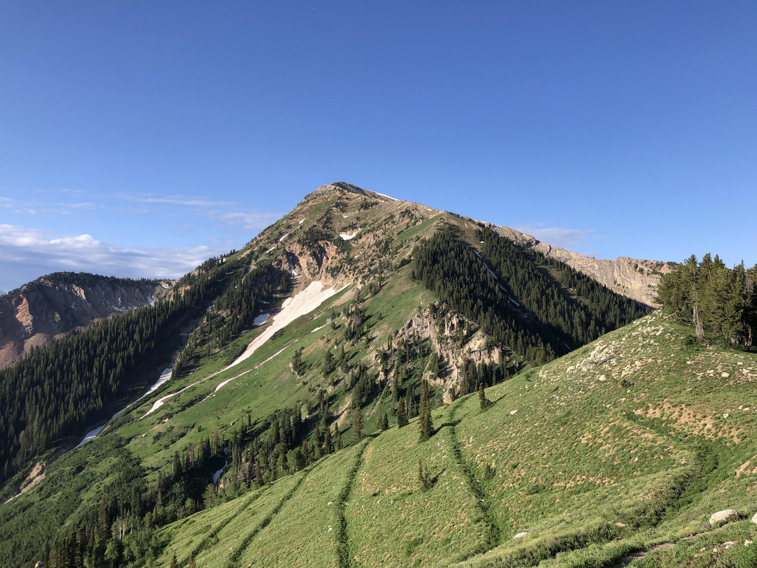 Box Elder Peak.jpg