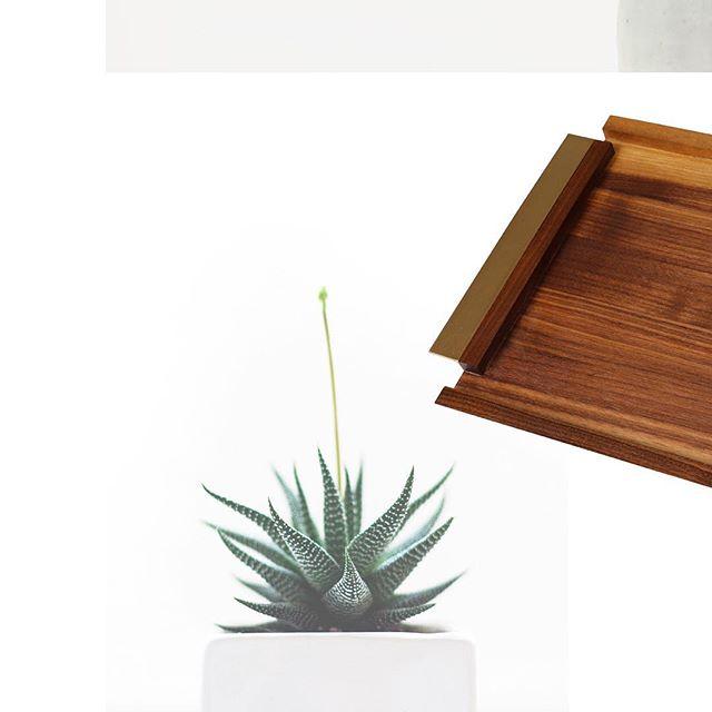 The harmony of nature, brass and wood... a stunning combination! 👌•⠀ •⠀ •⠀ •⠀ •⠀ #designinspiration #houzz #mbhg #homedecor #houseandhome #homeinspo #styleathome #homedesign #minimalexperience #homepolish #howyouhome #interior444 #kitcheninspo #sodomino #productdesign #slowliving #liveslow #theartofslowliving #livethelittlethings #finditliveit #huffpostgram #nothingisordinary #momentslikethese⠀