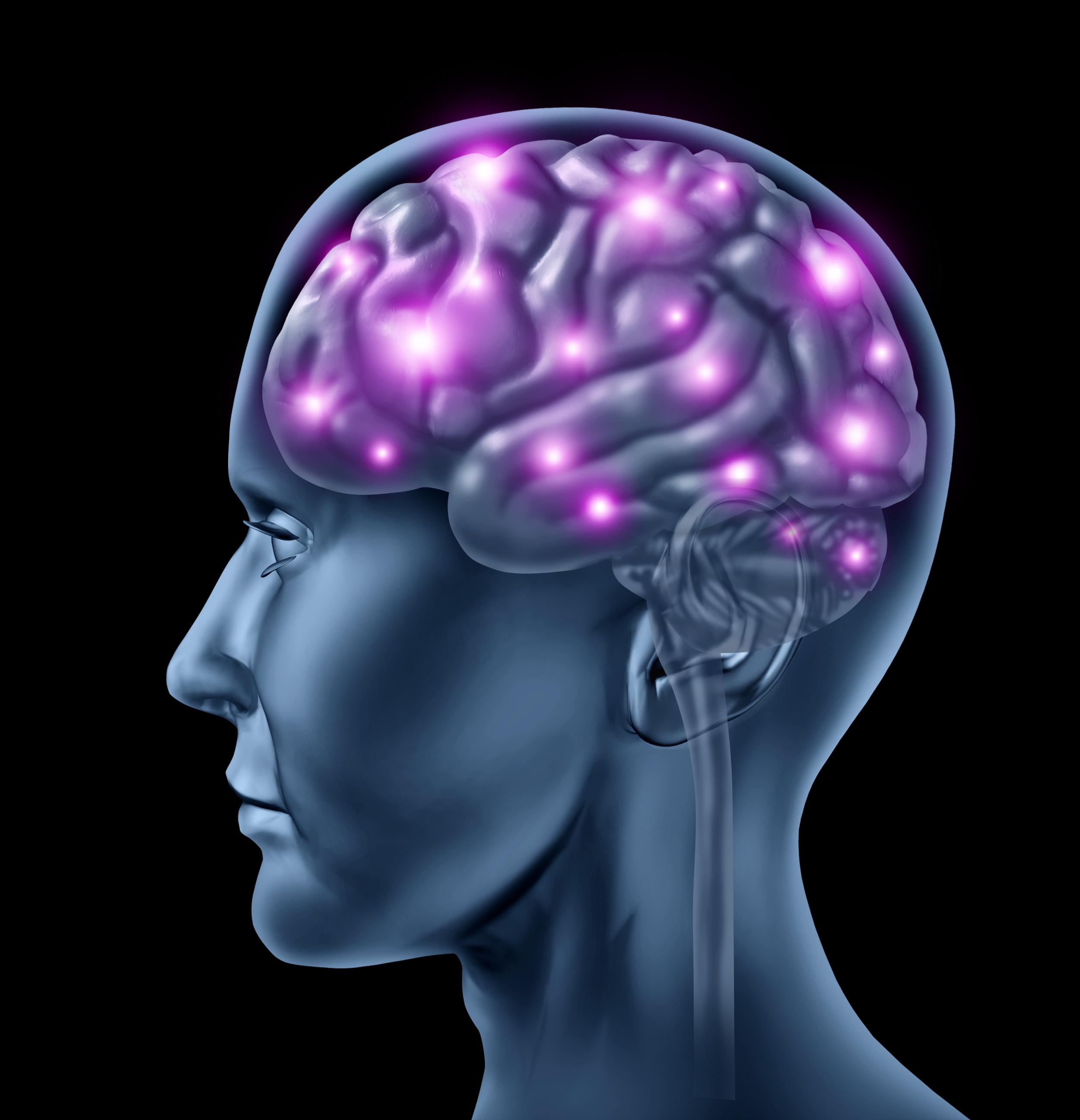 tinnitus-in-the-brain