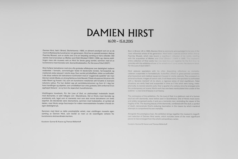 Damien Hirst - Exhibition Text