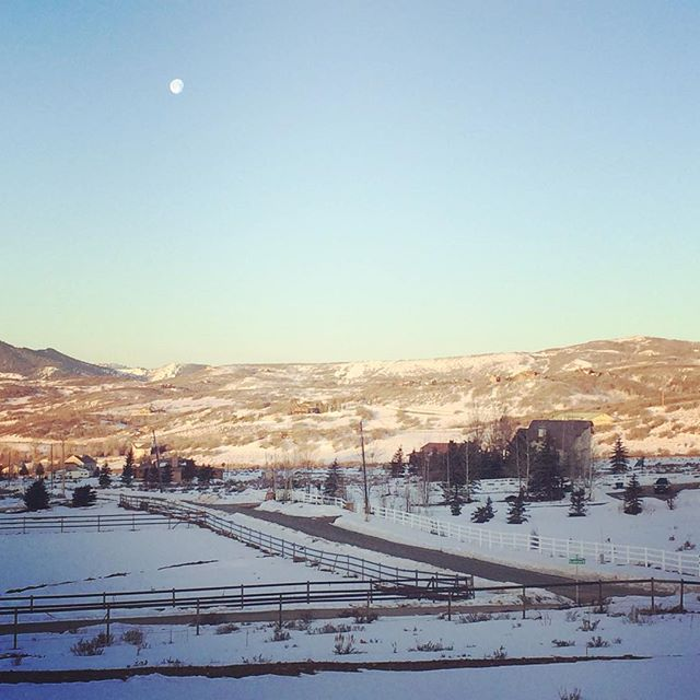 Good morning Park City! Good morning Luna! #sidehustle #sidepreneur #heywildflower #gypsylife