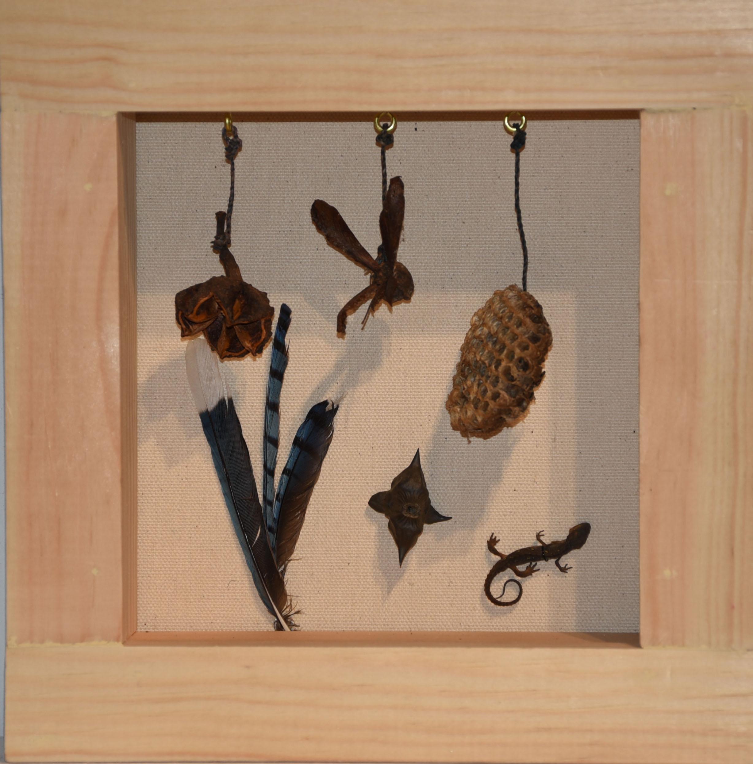 BarbaraArumNuts,Bees,Birds.JPG