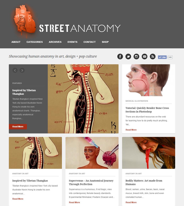 Annie_Campbell_Street_Anatomy_Youtube_Tutorial