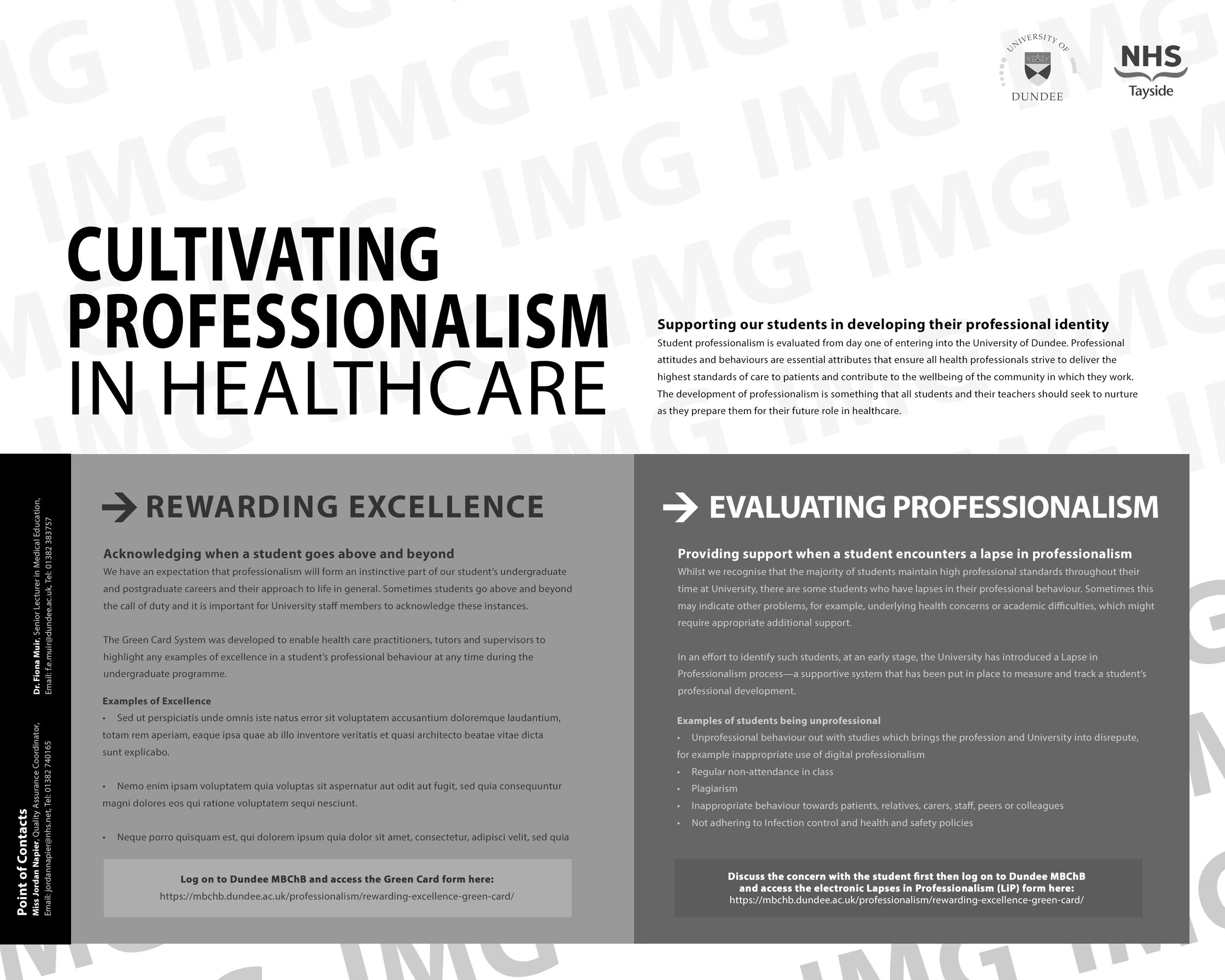 Professionalism_Poster_Greyscale_mockup_01.jpg