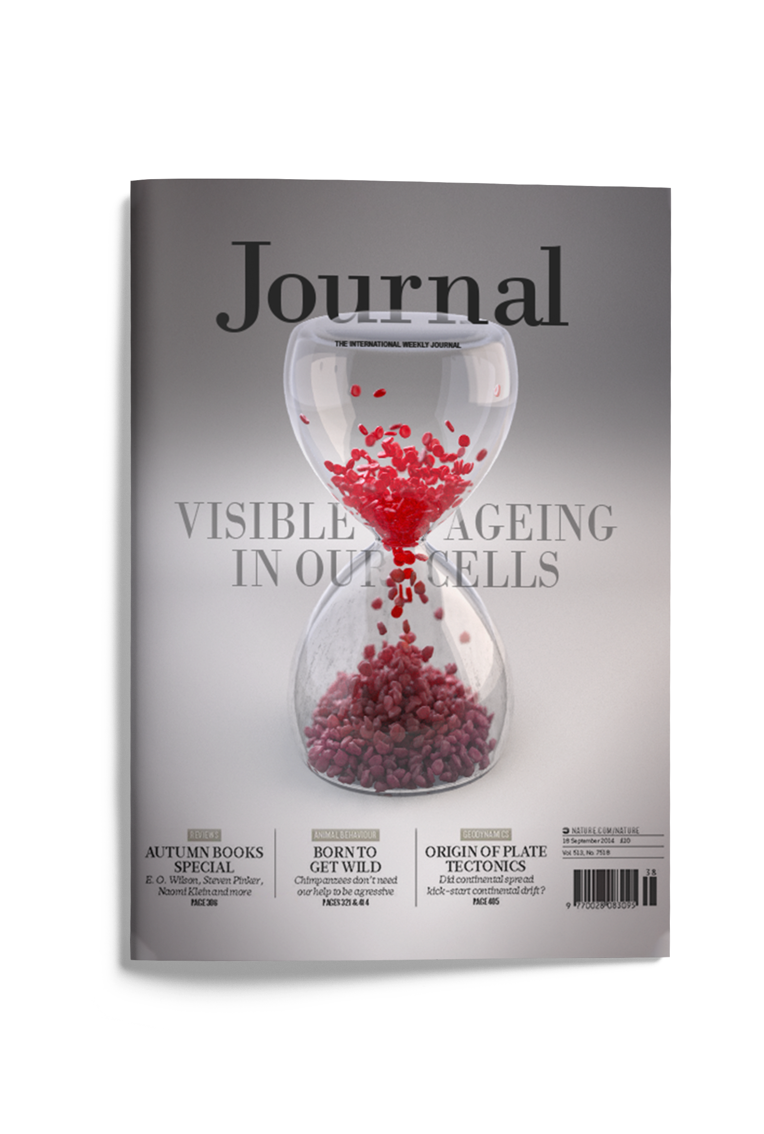 Campbell Medical Illustration Journal Cover.png