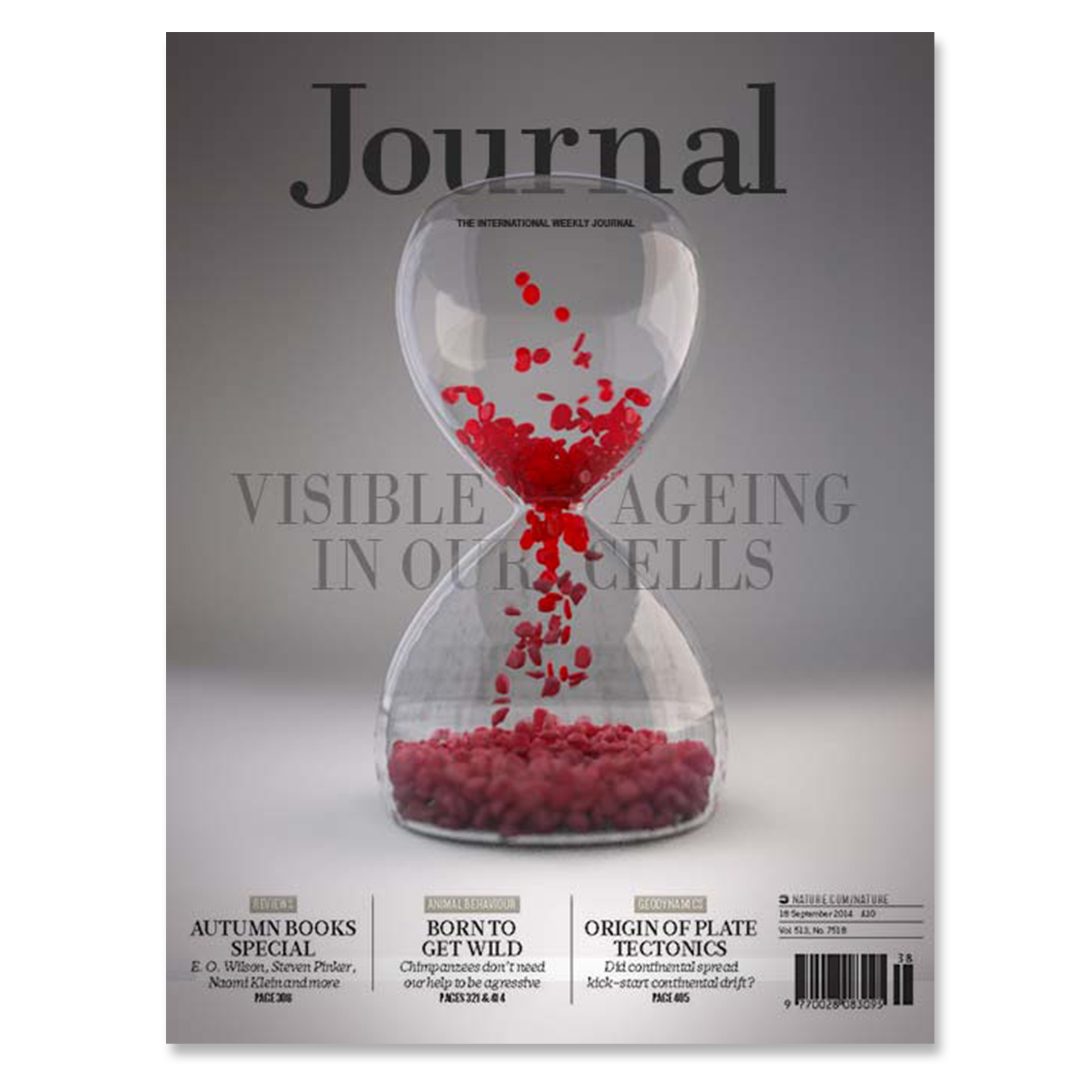 Journal-image-02.png