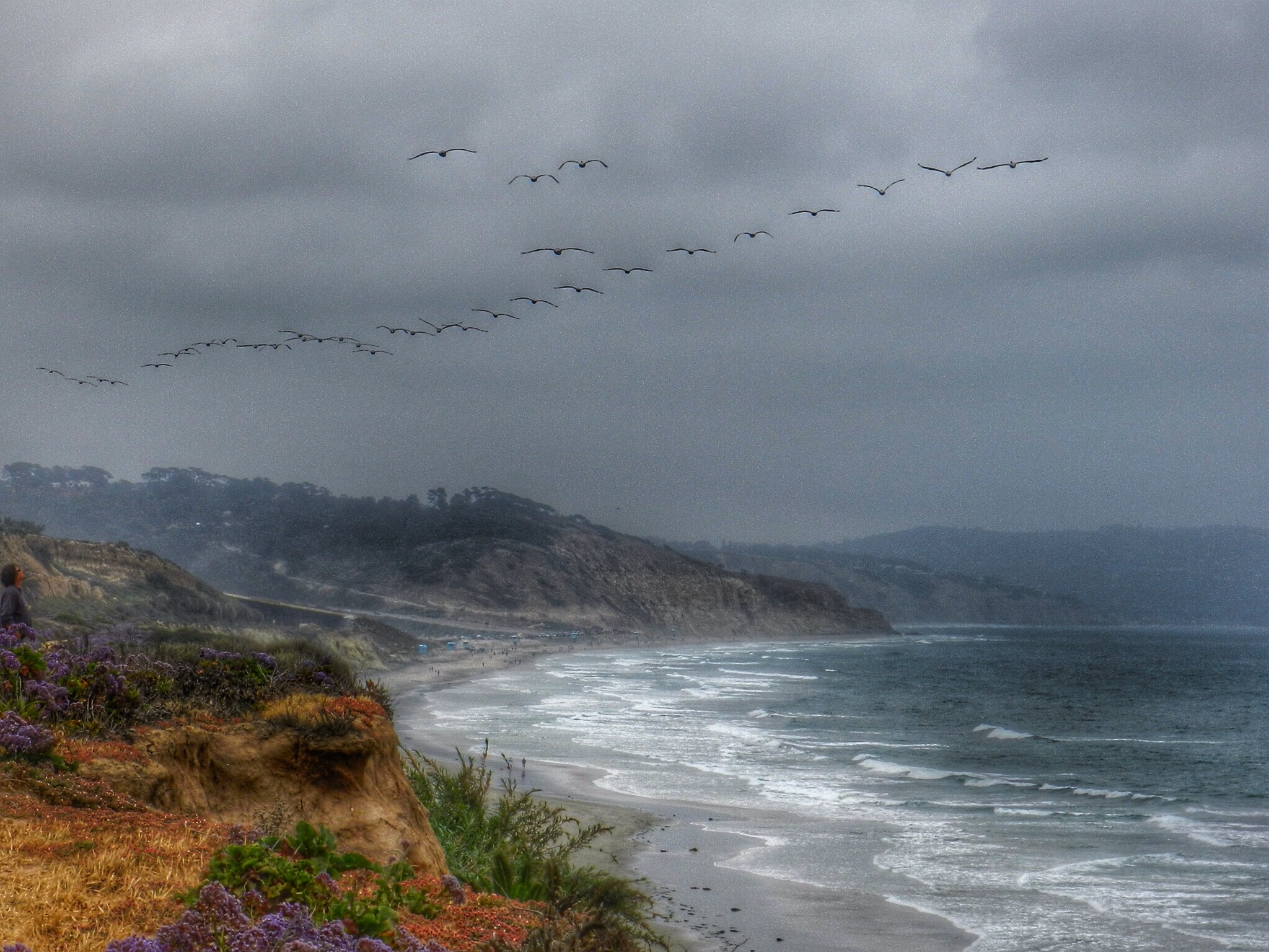 Torrey Pines Beach, Del Mar, CA