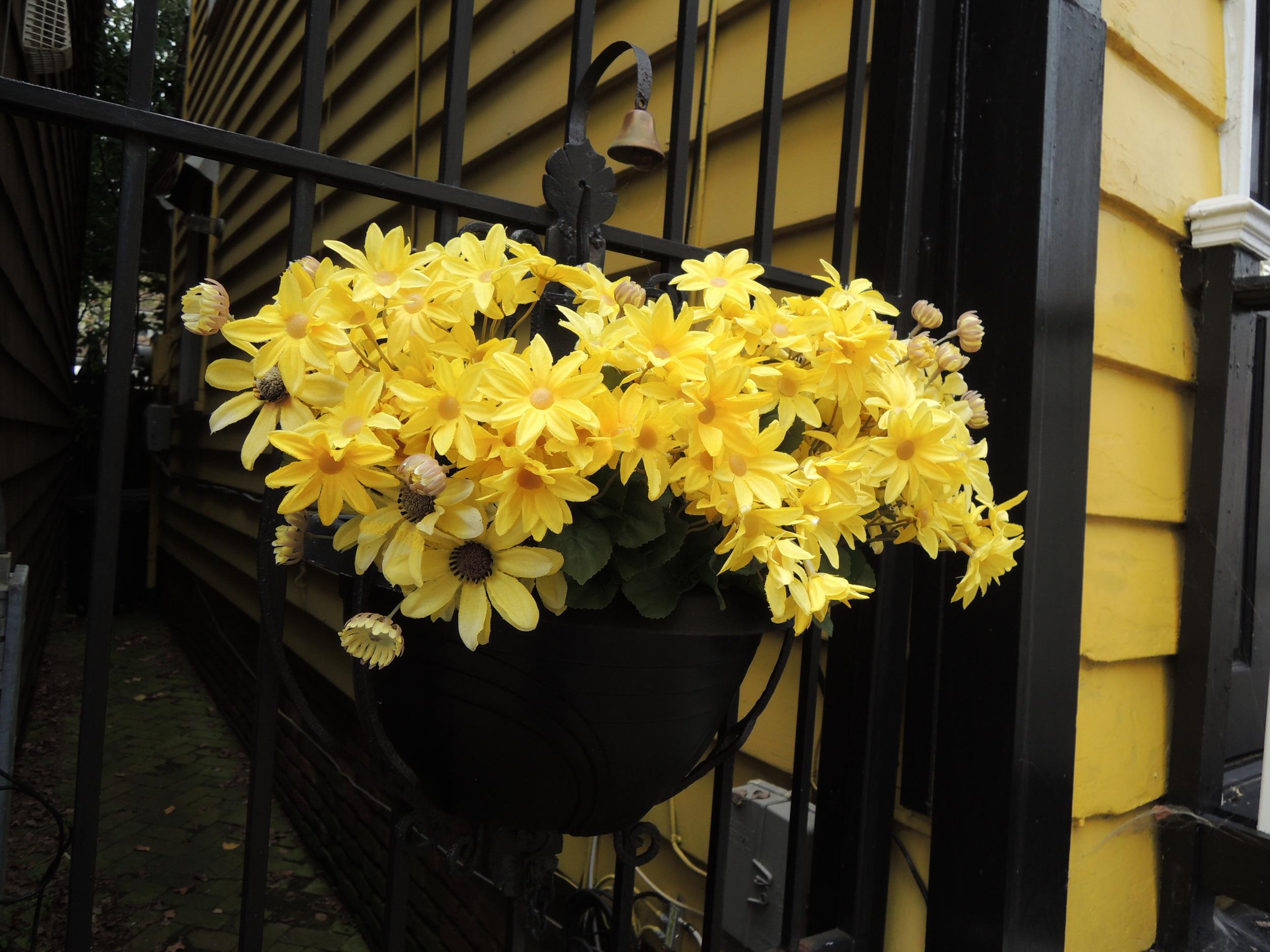 An adorable flower box