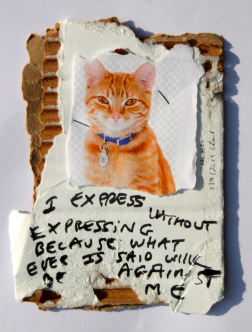 I express without expressing because whatever is said will be against me, black marker text on color print and carton, 13 x 27 cm
